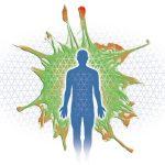myofasciale kropp utrecht